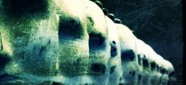 "IN MY SHIVER (ITA) ""Delicate poison"" CD 2014 (Hypnotic Dirge Records)"