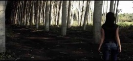 "GRIM COMET (ESP) ""Virgins of madness"" (Video oficial)"